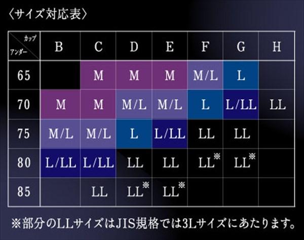 サルート『ナイトアップブラ ドレッシィ』のサイズ表