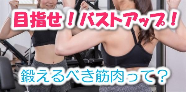 バストアップのために鍛えるべき筋肉